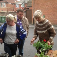 St George's Day Plant Share